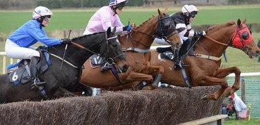 brightling-racing-point-to-point